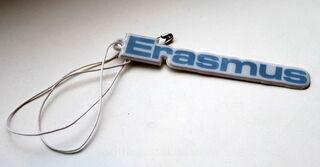 Erasmus erikujuga helkur